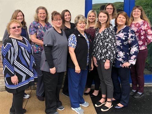 Public Health Nursing Staff in 2019